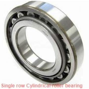 NU38/1060 Single row cylindrical roller bearings